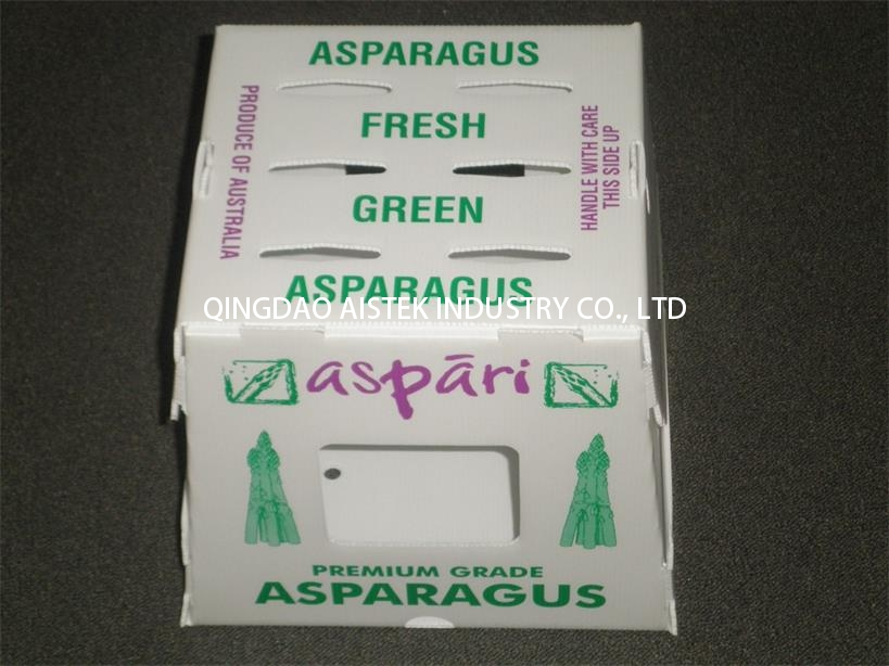 PP plastic corrugated box